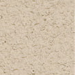 Sand Dollar Stucco